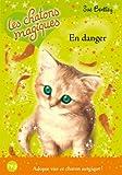5. Les chatons magiques : En danger