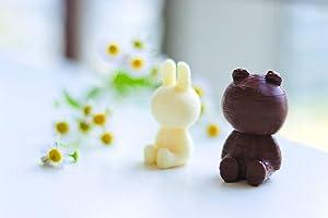 WiibooxSweetin Intelligent Sliver Home DIY 3D Desktop Food Chocolate Printer 60ML (Color: Silver, Tamaño: 60ml)