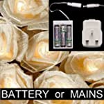 Blaze On Cream Cabbage Rose Battery a...