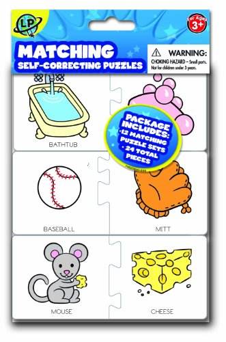 Matching Pairs Self Correcting Interlocking Puzzles
