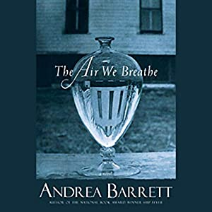 The Air We Breathe Audiobook
