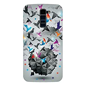 RD Digital Printed Designer Back Cover for LG K7 (Multi-color)