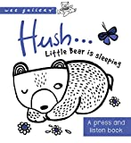 Wee Gallery: Hush! Little Bear is sleeping: A press and listen book (Wee Gallery Board Books)