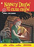 img - for Nancy Drew and the Clue Crew #1: Small Volcanoes book / textbook / text book
