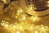 「KBook」 LED 雪の結晶 ストリングライト クリスマス 雪 イルミネーション 飾り 電池式 ライト 電池ボックス付き 防滴 電飾 ガーデン パーティー 屋外 室内 装飾 最適 (5M 40球 ウォームホワイト)
