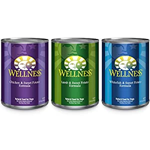Wellness Complete Health Natural Wet Dog Food, Best Sellers Variety Pack, 12.5-Ounce Can (Pack of 18)