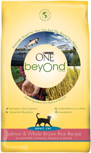 Image of Purina One Beyond Cat Food, Salmon and Brown Rice, 3-Pound Bag
