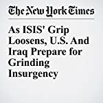 As ISIS' Grip Loosens, U.S. And Iraq Prepare for Grinding Insurgency | Michael Schmidt,Eric Schmitt
