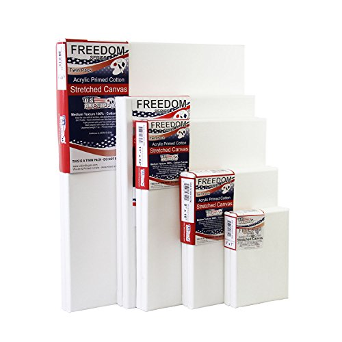 US Art Supply® Professional Quality MEDIUM 12oz Primed Gesso Stretched Canvas Multi-pack – Great for Students and Professional Artists (This Kit Is for 10 Assorted Medium Sized Canvases)