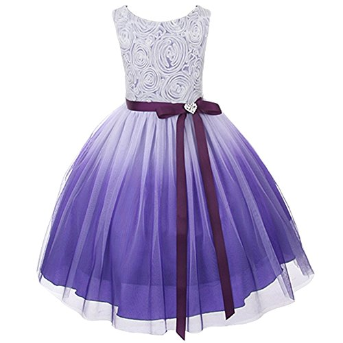 Purple Ombre Rosette Special Occasion Flower Girls Dress Christmas Wedding 2-14