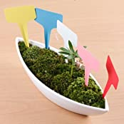 100pcs Plastic Plant T-type Tags Markers Nursery Garden Labels (Pink) Ymq