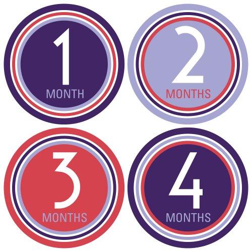 Monthly Onesie Stickers - Retro Deco Theme - Baby Girl Bodysuit Stickers - 1
