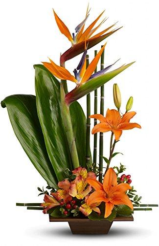 Birthday Flowers – Teleflora's Exotic Grace