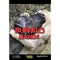 Gangland Killers : Buffalo Gangs
