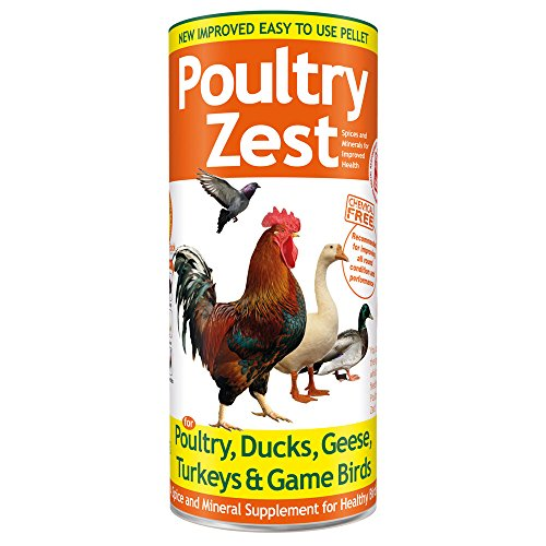 Chicken-Supplement-Poultry-Spice-Zest-500g