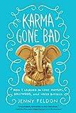 Karma Gone Bad: How I Learned to Love Mangos, Bollywood and Water Buffalo