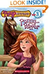 Scholastic Reader Level 3: Pony Myste...