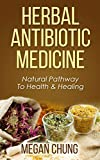 Herbal Antibiotic Medicine: Natural Pathway To Health & Healing (100% Safe & Effective)