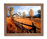 Old Wood Barn And Fence Fall Trees Home Decor Wall Picture Oak Framed Art Print