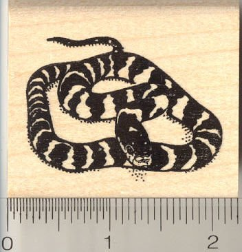 California King Snake Rubber Stamp