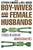 Boy-Wives and Female Husbands: Studies of African Homosexualities
