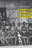 img - for RACE LABOR PUNISHMENT IN NEW SOUTH (HISTORY CRIME & CRIMINAL JUS) book / textbook / text book