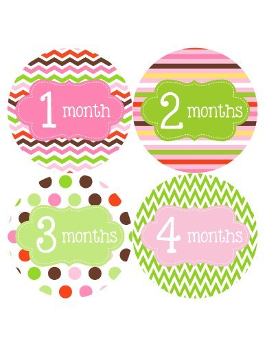 Months in Motion 038 Monthly Baby Stickers Baby Girl Milestone Age Month Sticker