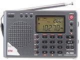 RioRand® PL-380 DSP FM stereo.