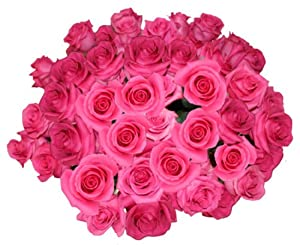 Flowers For Delivery - Impress Her With 25 GIANT, HOT PINK (Or Choose Color) Incredibly Fragrant Long Stem Roses-FREE GIFT MESSAGE - Top Rated Roses On Amazon from Spring in the Air Luxury Roses - Will WOW Your Recipient!