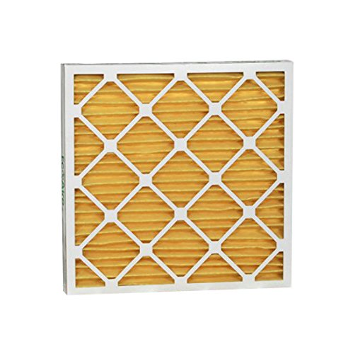 """Eco-Aire P15S.021621 MERV 11 Pleated Air Filter, 16 x 21 x 2"""""""