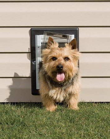 Dog Supplies Small Petsafe Wall Dog Door