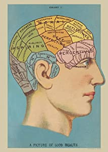 Amazon.com: Poster of Phrenology Vintage Art Picture of Good Health