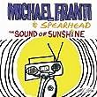 The Sound Of Sunshine (Album Version)