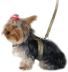 Anima Gold Sparkle Harness and Leash Set, XX-Small