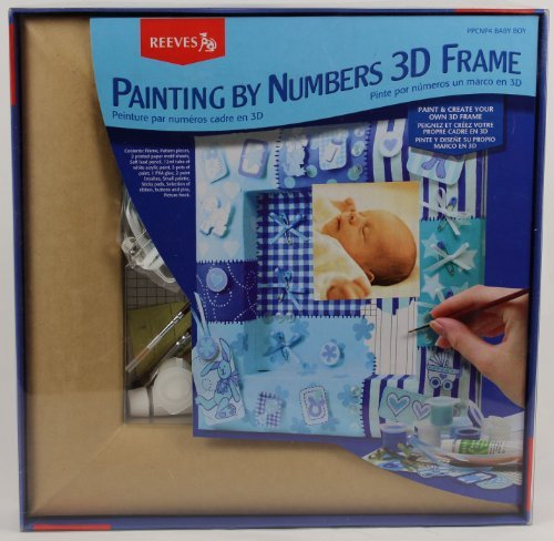 Painting By Numbers 3D Frame by Reeves