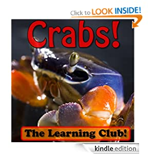 Crabs! Learn About Crabs And Learn To Read - The Learning Club! (45+ Photos of Crabs)