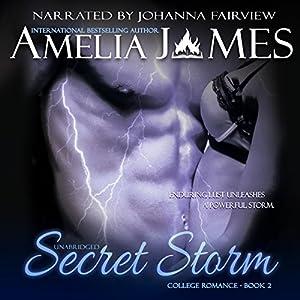 Secret Storm Audiobook