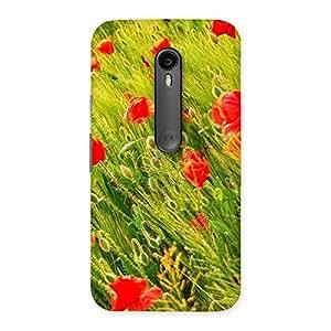 Beauty Flowers Farm Back Case Cover for Moto G Turbo