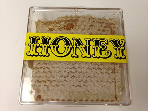 Pure Natural Raw Honeycomb - Local to Florida Honeycomb - High Quality, Never Heated or Pasteurized, Unprocessed, No Additives, NOT FROM CHINA, Amazing Health Benefits! Pure Honeycomb - Natural Honeycomb - Raw Honeycomb - Honey Bee Honeycomb Florida 12 Ounce