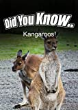 Kangaroos (Did You Know)