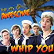 "Whip You (Parody of One Direction's ""Kiss You"")"