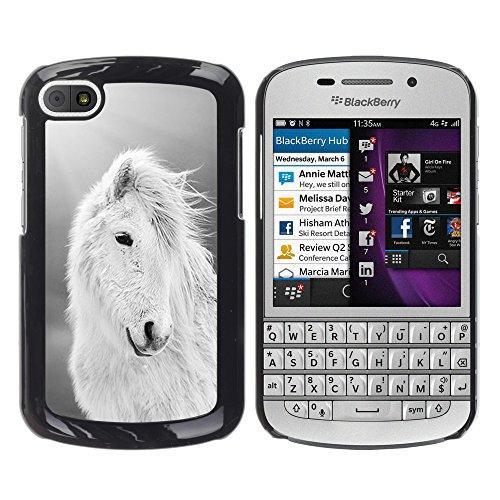 WonderWall Tapete Bunt Bild Handy Hart Schutz hülle Case Cover Schale Etui für BlackBerry Q10 - Pferd weiß schwarz sommer tier
