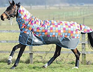 WeatherBeeta Original 1200D Combo Medium Turnout Rug from WeatherBeeta