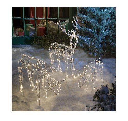 Reindeer lighted yard displays christmas wikii for Christmas deer lawn decorations
