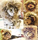 Generic Lion Costume Mane Wig for Cats, S, Blending