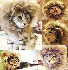 Amazon.com : Generic Pet Costume Lion Mane Wig for Cat Christmas Xmas