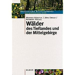 Wälder des Tieflandes und der Mittelgebirge - (Ökosysteme Mitteleuropas aus geobotanisch