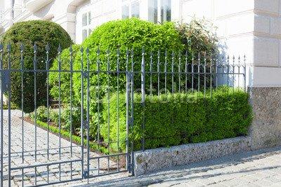 alu dibond bild 140 x 90 cm vorgarten mit zaun bild auf alu dibond. Black Bedroom Furniture Sets. Home Design Ideas