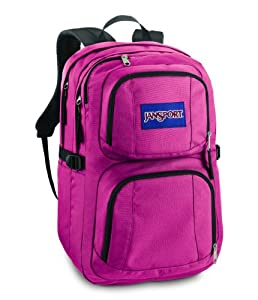JanSport Merit Backpack (Pink Prep)