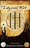 The Labyrinth Wall (Obsidian Series Book 1)